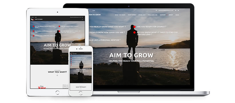 Introducing the new Aim to Grow website